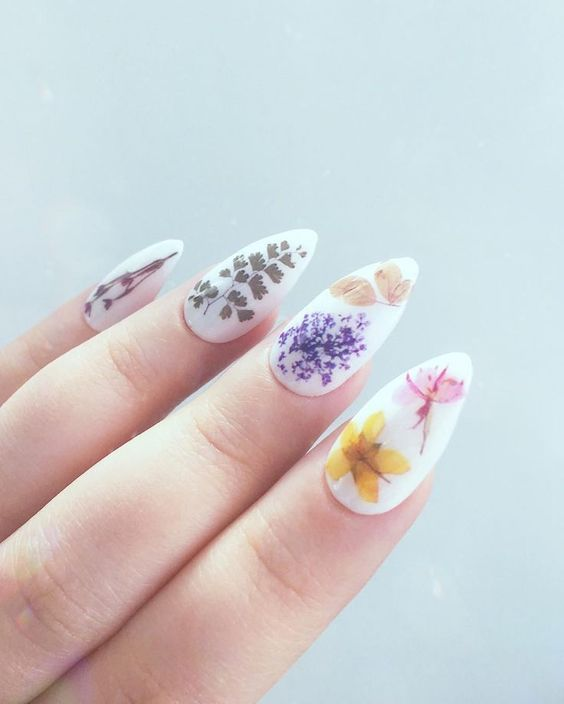 white pointed tip nails with real dried flowers in purple, yellow, pink, green and red