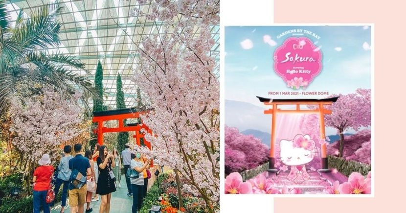 GBTB's 2021 Sakura Floral Display To Feature Hello Kitty For The First Time Ever, Admissions Open From 1 March