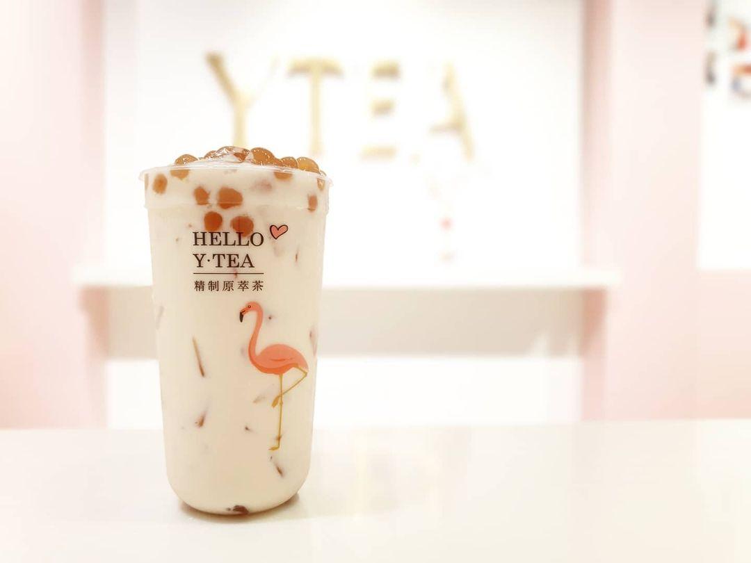 Green Milk bubble Tea ytea