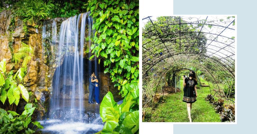 10 Secret & Lesser-Known Gardens & Parks In Singapore For Picturesque Walks